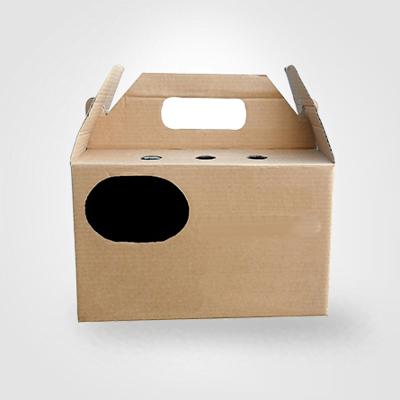 Custom Printed Pet Packaging Boxes 3