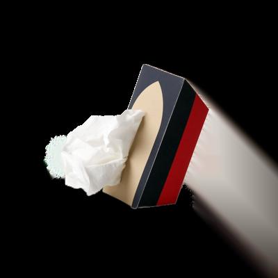 Custom Tissue Packaging Boxes 1
